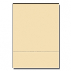 Perforated at 3-2/3 Bristol Cover Ivory 8-1/2x11 67lb 250/pk