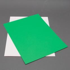 Astrobright Gamma Green 8-1/2x11 Label Paper 100/pkg