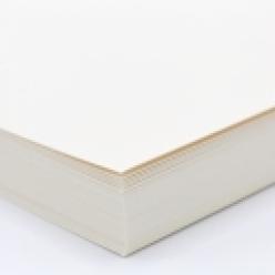 Curious Cover White Gold 12x18 92lb/250g 100/pkg