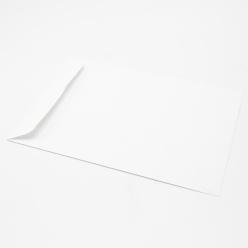 White Catalog 10x13 28lb Envelope 500/box
