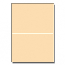 Half-Fold Brochure 11x17 65lb Astroparche Ancient Gold 125pk