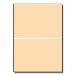 Half-Fold Brochure 11x17 65lb Astroparche Aged 125/pkg