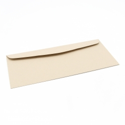 Environment Desert Storm Envelope #10-24lb 500/box