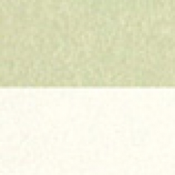 Duplex 8-1/2x11 120lb Cover Saw Grass/Natural White 100/pkg