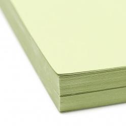 Basis Premium Cover 8-1/2x11 80lb Olive 100/pkg