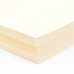 EarthChoice Index Cover Ivory 8-1/2x14 90lb 250/pkg