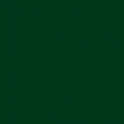 Plike Text Green 12x18 95lb/140g 100/pkg
