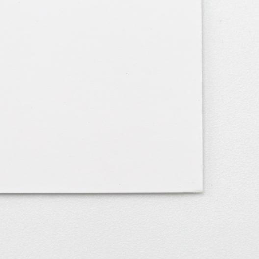 Curious Skin Extra White 8-1/2x11 100lb/270g Cover 100/pkg