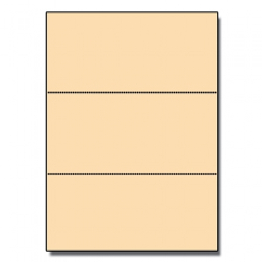 Perforated Every 3-2/3 Bristol Cover Ivory 8-1/2x11 67lb 250/pkg