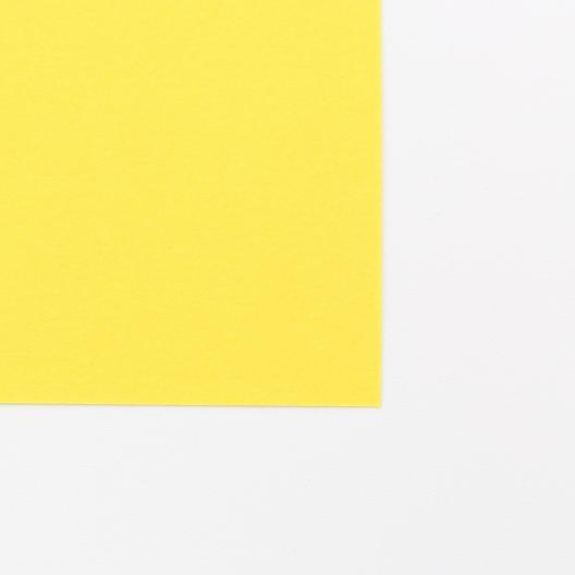 Basis Premium Text 8-1/2x11 70lb Gold 200/pkg