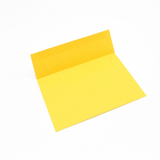 Basis Premium Envelope A7[5-1/4x7-1/4] Gold 250/box