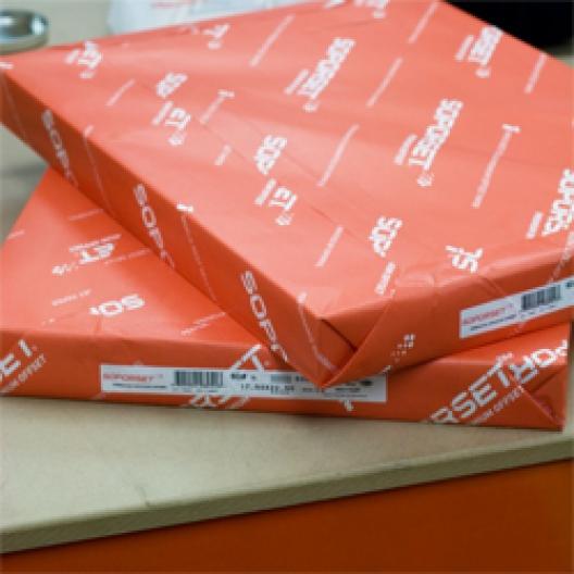 Paperworks Document Paper 13x19 24lb 725/pkg
