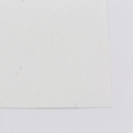 CLOSEOUTS Stardust White Astrobright Cover 8-1/2x11 80lb 250/pkg