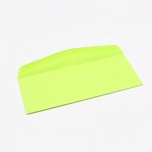 Astrobright Envelope Terra Green #10 24lb 500/box