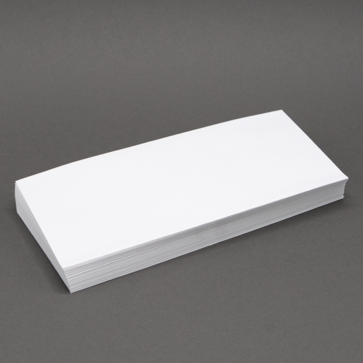 White Wove #10-24lb Regular Envelope 500/box