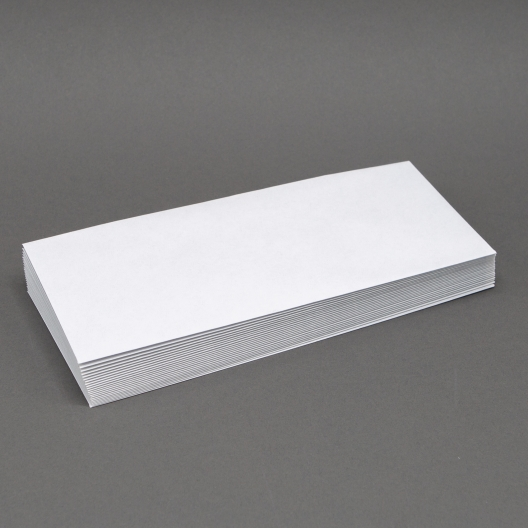 Security Tint #10 24lb Regular Envelope 500/box