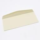 CLOSEOUTS Classic Crest Envelope Saw Grass #10 24lb 500/box
