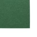 Basis Premium Text 8-1/2x11 70lb Green 200/pkg