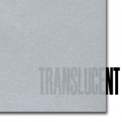 Curious Translucent Silver 12x18 27lb/100g Text 100/pkg