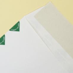 First Class Peel&Seal  White GDB 9-1/2x12-1/2 14lb Tyvek Envelope 100/box
