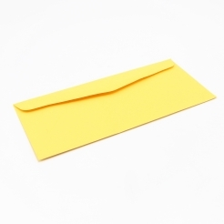 EarthChoice Envelope Gold #9 24lb 500/box
