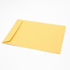 Brown Kraft Catalog 9-1/2x12-1/2 28lb Envelope 500/box