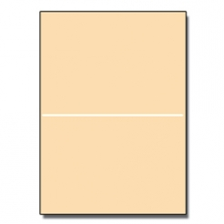 Perforated at 5-1/2 Bristol Cover Ivory 8-1/2x11 67lb 250/pk