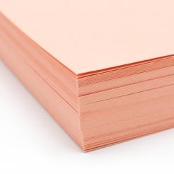 Basis Premium Cover 8-1/2x14 80lb Coral 100/pkg