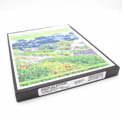 Paperwork Semi-Gloss Coated Trifold Brochure for Inkjet 50/pkg