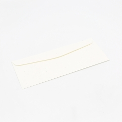 Astrobright Envelope Stardust White #10 24lb 500/box