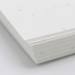 CLOSEOUTS Astrobright Stardust White 8.5x14 24lb 500/pkg