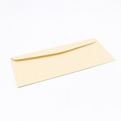 CLOSEOUTS Astroparche Envelope Sand #10 24lb 500/box