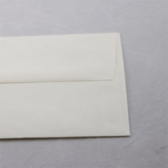 Astroparche Envelope White A-2[4-3/8x5-3/4] 250/box