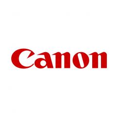 Canon imagePROGRAF Ink Tank Photo Gray 700ml