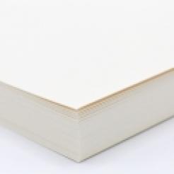 Curious Text White Gold 12x18 80lb/120g 100/pkg