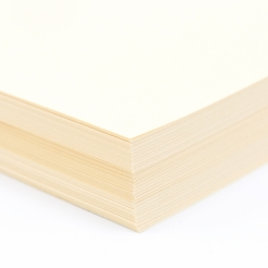 EarthChoice Index Cover Ivory 8-1/2x11 90lb 250/pkg