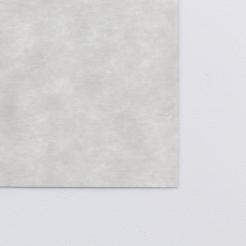 Astroparche Text Gray 8-1/2x11 24lb 500/pkg