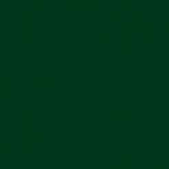 Plike Text Green 11x17 95lb/140g 100/pkg